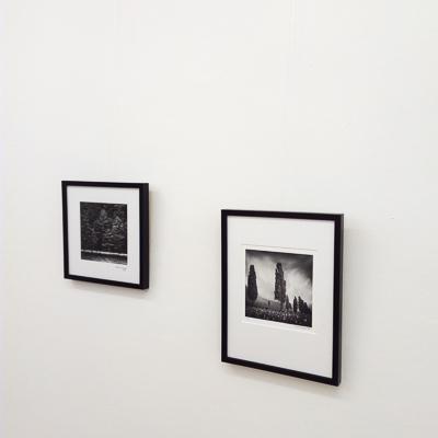 2020-400px-web--herbertkoeppel-photographs-and-workshops-IMG_20201120_135917.jpg