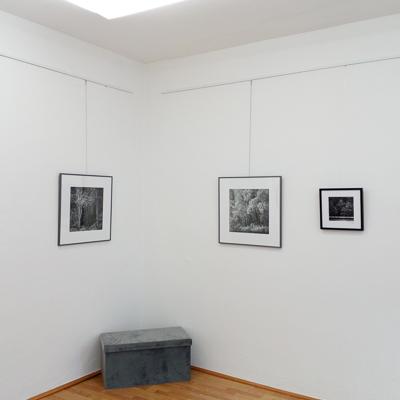 2020-500px-web--herbertkoeppel-photographs-and-workshops-IMG_20201130_114236.jpg