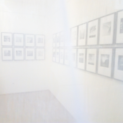 2021-400px-web--herbertkoeppel-photographs-and-workshops-IMG_20210130_161717.jpg