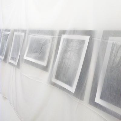 2021-400px-web--herbertkoeppel-photographs-and-workshops-IMG_20210313_171207.jpg