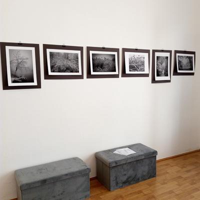 2021-400px-web--herbertkoeppel-photographs-and-workshops-IMG_20210401_152053.jpg