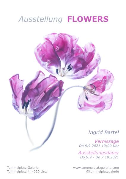 Ausstellungsplakat - Vernissage Do 9.9.2021 Ingrid Bartel_0.jpg